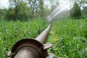 Beregening van grasland en mais