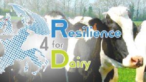 R4D Europees onderzoek voor meer duurzaamheid op melkveebedrijven