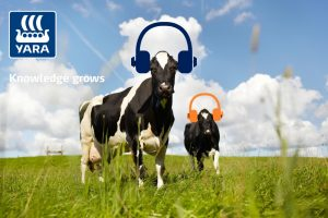 Podcast: Benut nu het eiwit in het gras