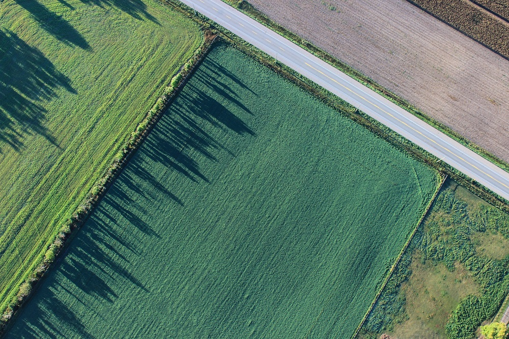 Selenium bewijst waarde op proefboerderijen